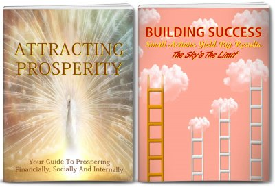 prosperity and success plr