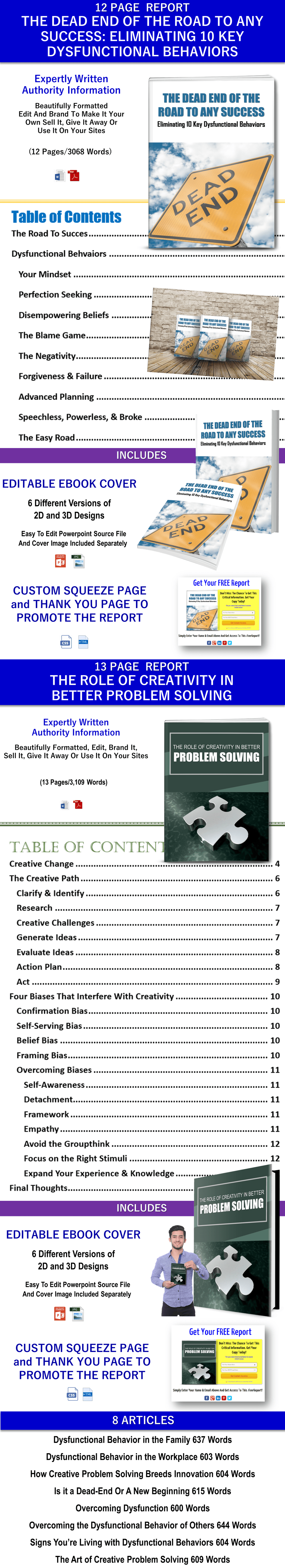 Success and Problem Solving PLR