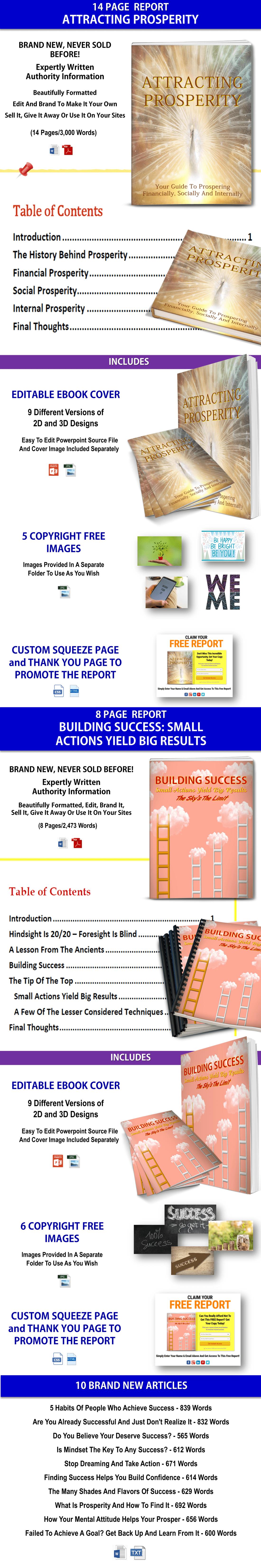 Prosperity and Success PLR