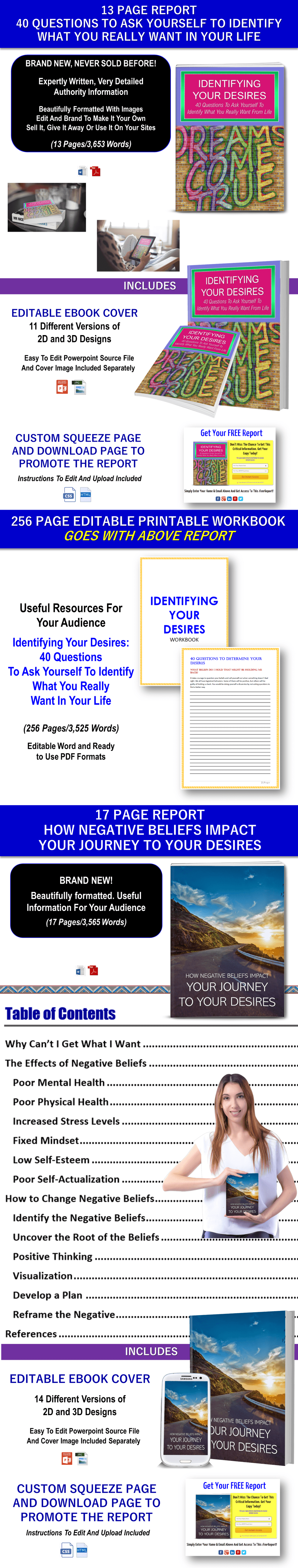 Identifying Desires/Making Decisions Content - Private Label Rights