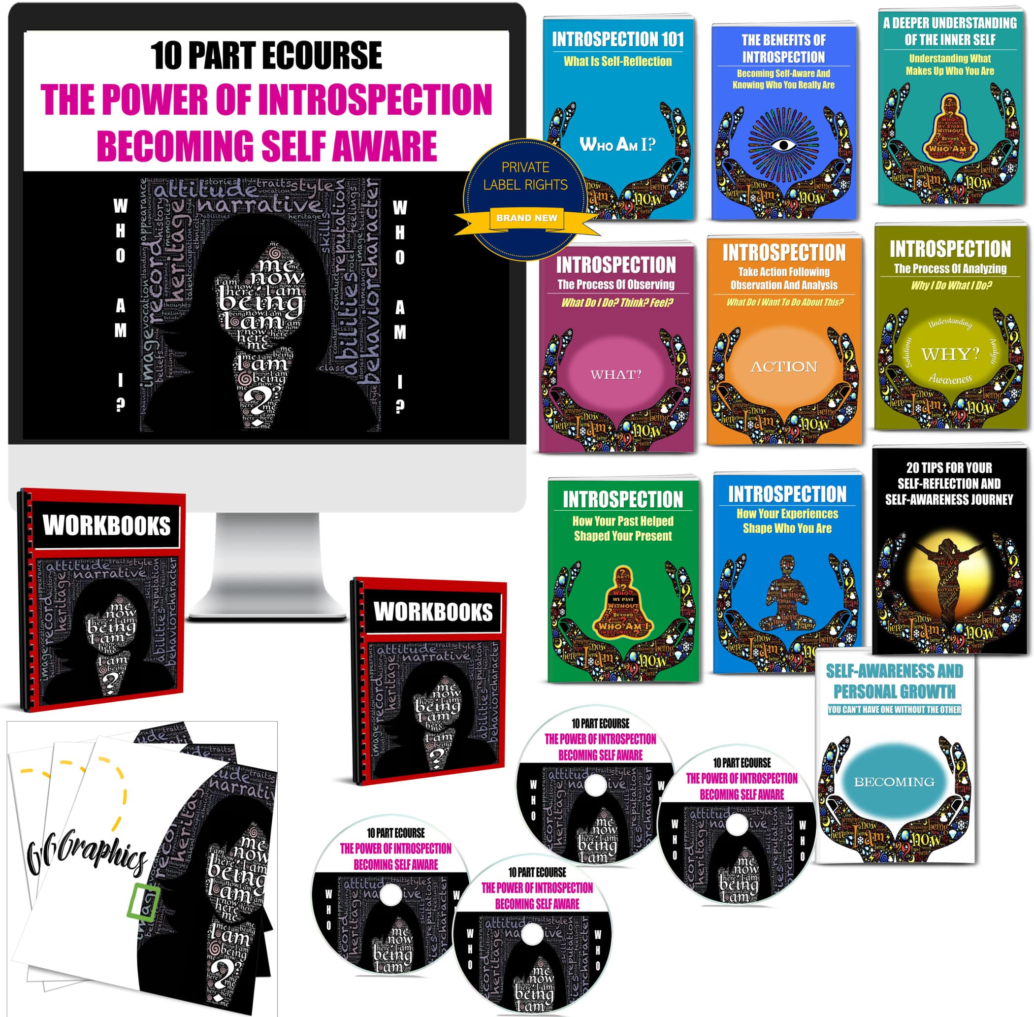 10 Part eCourse: Introspection: Becoming Self-Aware with PLR Rights