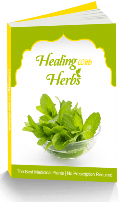 Natural Healing/Health Wellness PLR