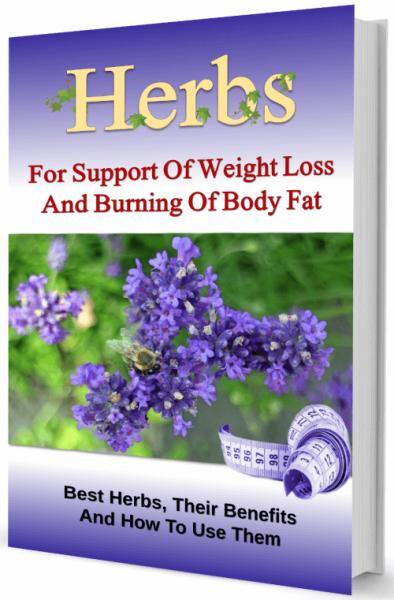 Herbs-fat-burning-plr