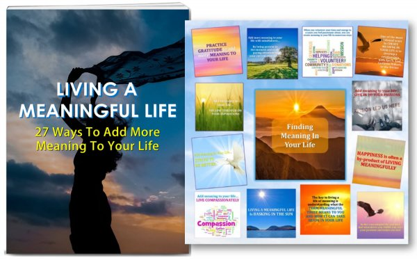 meaningful life plr
