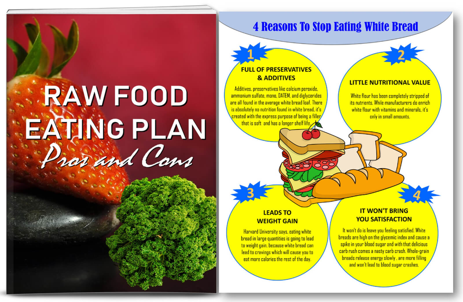 raw food healthy diet plr