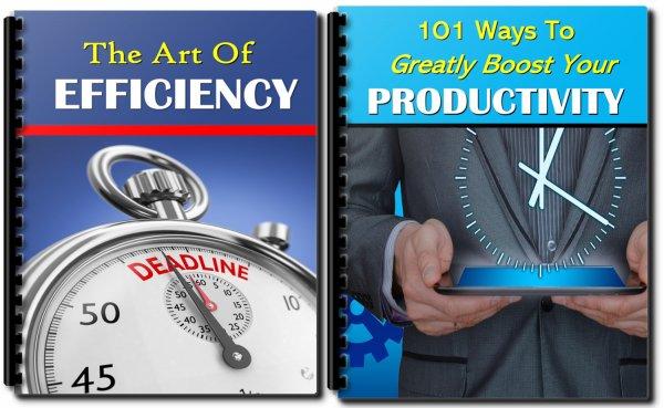 efficiency and productivity PLR