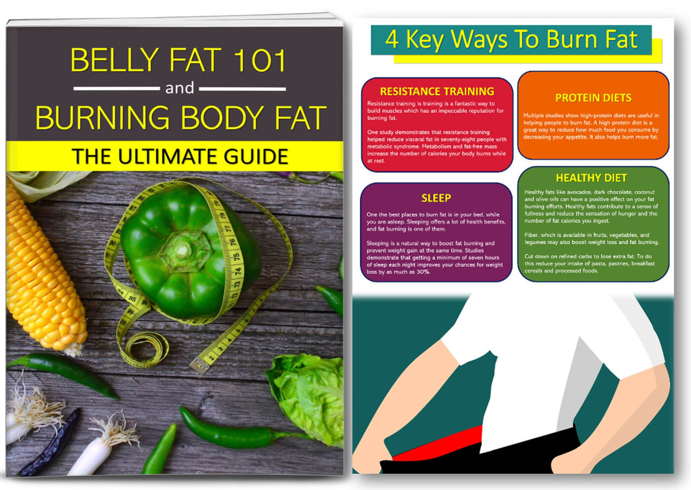 belly fat plr