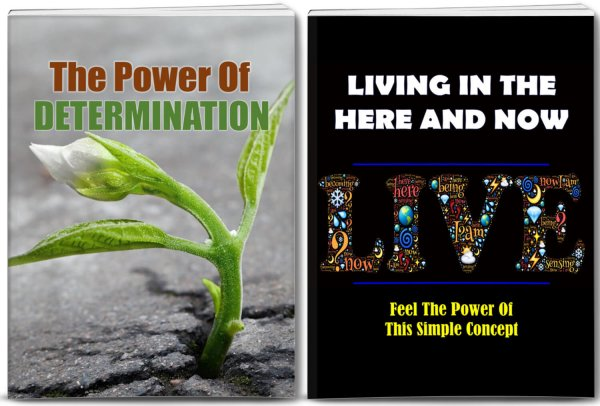 determination - living in moment plr