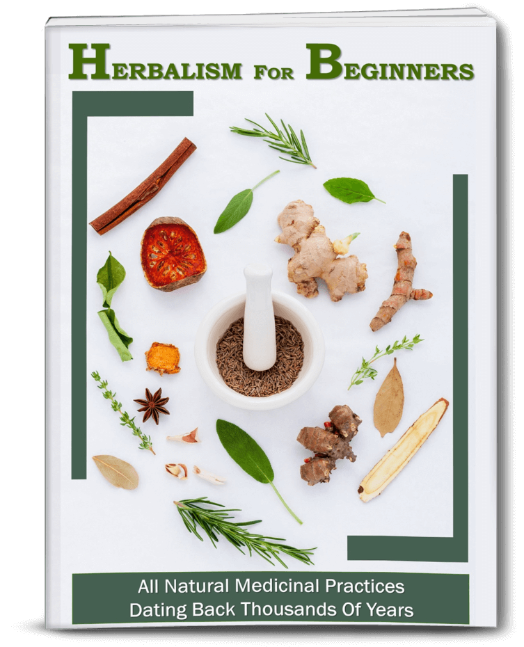 alternative medicine for beginners