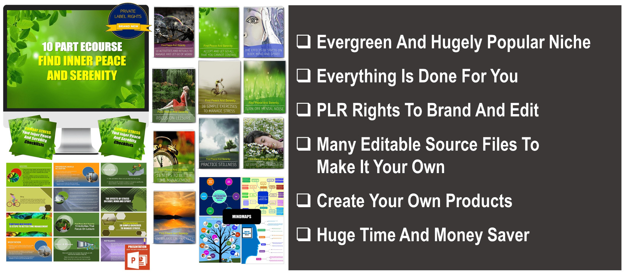 10 Part eCourse: Combat Stress - Find Inner Peace & Serenity In A Chaotic World 300+ Piece PLR Pack