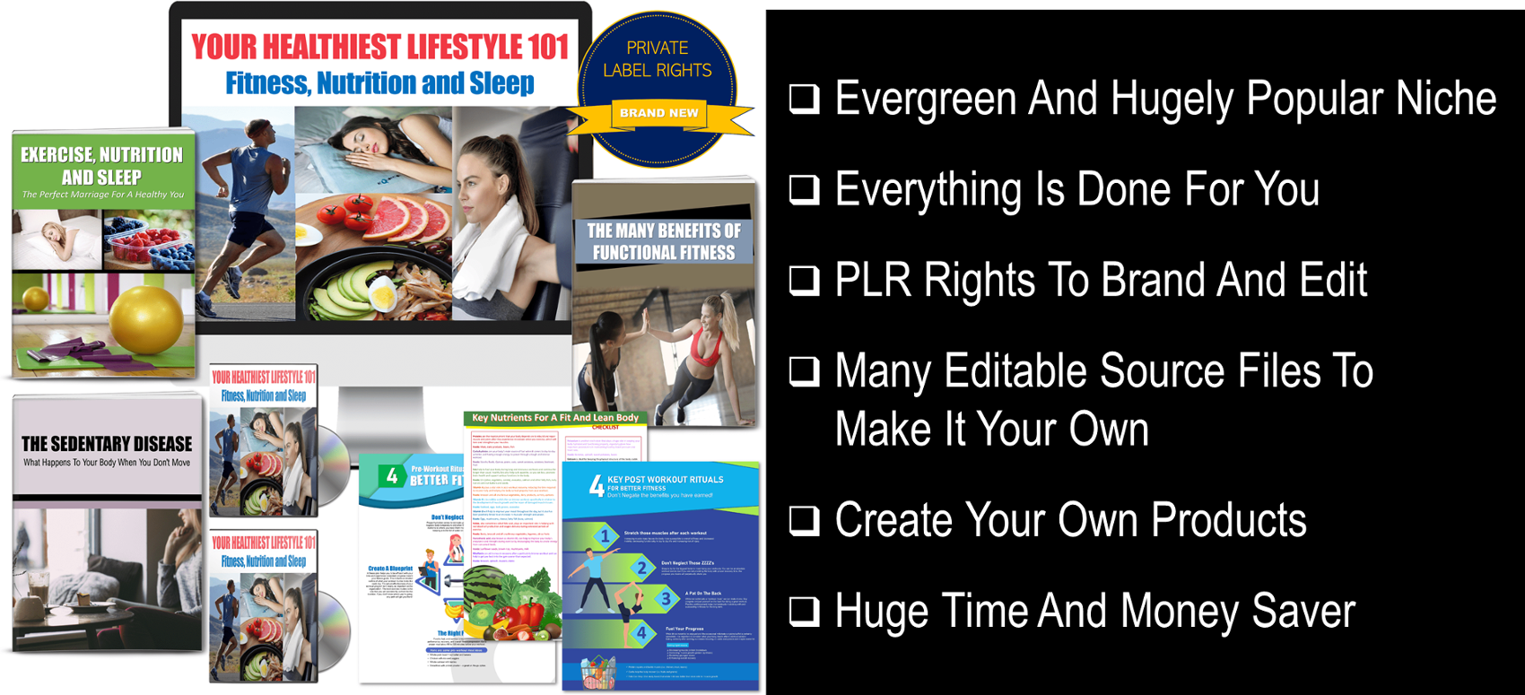 Healthy Lifestyle Content with PLR rights