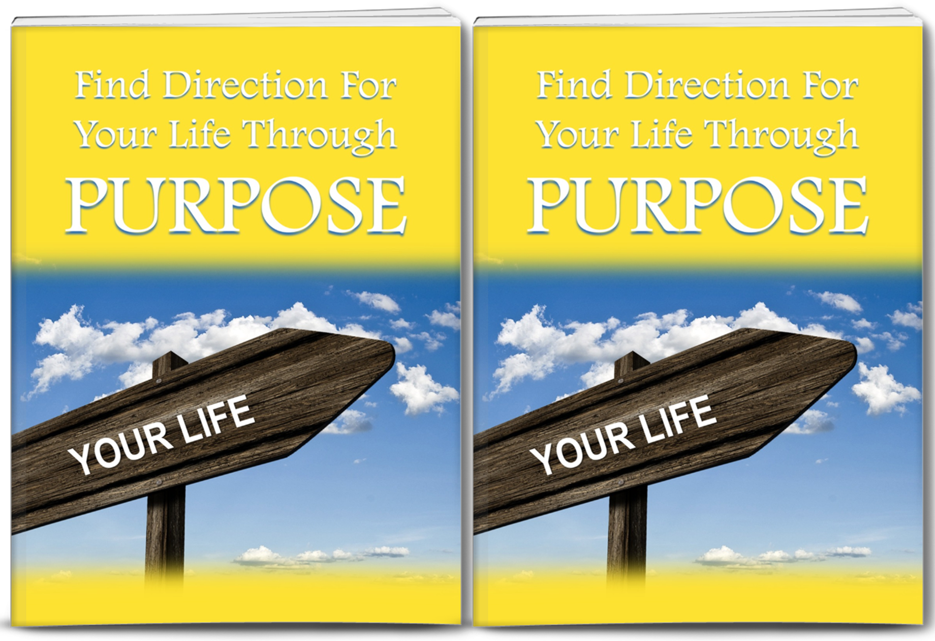 Purpose PLR