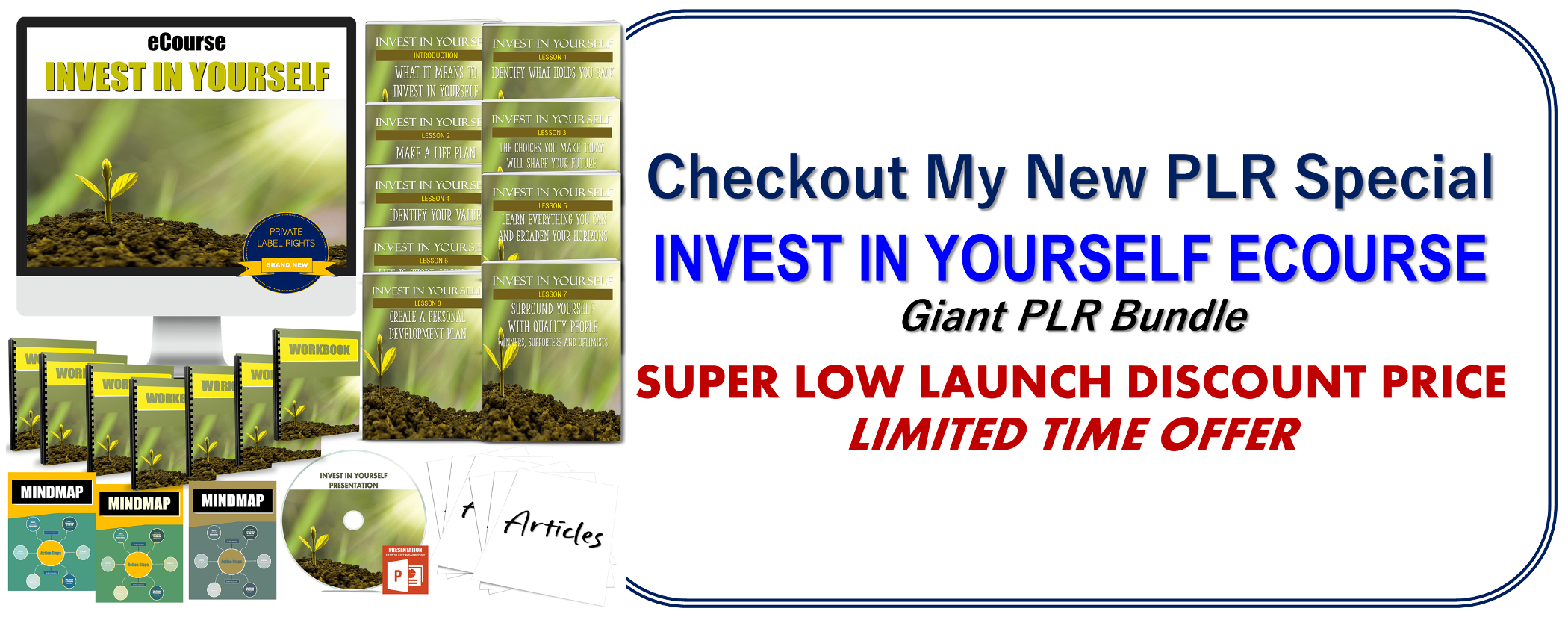 Invest In Yourself PLR Ecourse